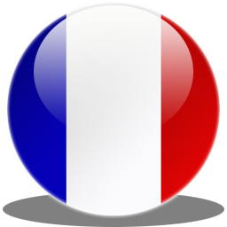 France flag to change site languaje